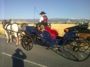 Calesas,carruajes Nacho&Mary coches de caballos para bodas